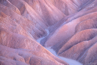Pastel Path