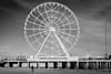 Scenes from Atlantic City #1 (Kenneth Laurence Neal) Tags: atlanticcity beach noir ferriswheel monotone blackandwhite people nikon nikond5200 monochrome newjersey