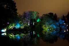 Winterlichter im Palmengarten (roland_zink) Tags: city frankfurt hessen deutschland deu palmengarten night lake reflections lights