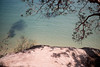 Sydney (.Kaisu.) Tags: kodak portra asahipentaxspotmatic pentax spotmatic spii supertakumar3535 supertakumar australia filmphotography analogue sydney