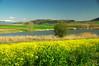 Пролет в Разметаница (sevdelinkata) Tags: grass tree water sky mountain landscape bulgaria
