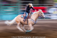 Explore May 29, 2018  ride her ....or rider....or panned rider (light shift) Tags: rodeo horse horserace rider panned panning blur fast running cowgirl cowboy laclabiche alberta canada