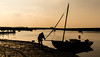 A man, a boat and a golden hour-5324 (Patrick Ladbrooke) Tags: burnham yacht staithe water river burn norfolk buoyant