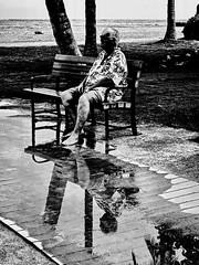 HBM! Rain puddle reflections (peggyhr) Tags: peggyhr bench rainpuddles reflections beach boardwalk bw textures palmtrees ocean dsc09035axy hawaii