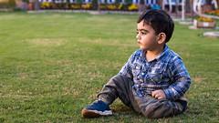 IMG_4877 (farhadtantra) Tags: farhadtantra fzphotography photography canon canon70d cityofiqbal sialkot pakistan qais qaisfathad son myson kid child boy beautiful flowers garden mygarden