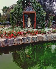 Virgen de Fátima - Rodeada de Flores y de un lago con peces de colores (MariaTere-7) Tags: virgendefátima flores lago peces colores parquedelosolivos lima perú maríatere7