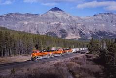 BNSF 1001w    E. Marias,MT (larryzeutschel) Tags: bnsf montana mountains hiline marias pass
