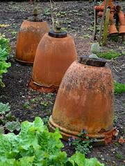 Packwood House, Garden (jacquemart) Tags: packwoodhouse garden warwickshire nationaltrust spring