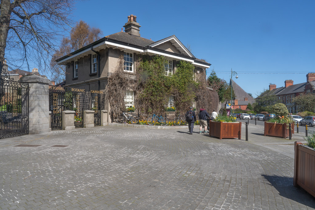 VISIT TO THE NATIONAL BOTANICAL GARDENS [GLASNEVIN DUBLIN]-138522