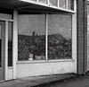Astoria, Oregon (austin granger) Tags: astoria oregon shop window plants growth geometry lines sidewalk street reflection nature square film gf670