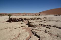 Дэдвлей (Oleg Nomad) Tags: африка намибия сафари пустыня песок дюна дэдвлей соссусфлей природа жара africa namibia desert dune sand deadvlei sossusvlei nature travel hot