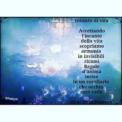 Incanto di vita (Poetyca) Tags: featured image immagini e poesie sfumature poetiche poesia