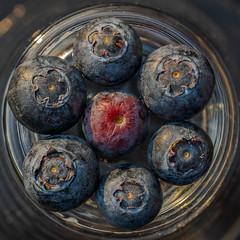 Vitamin - Revolver (ralfkai41) Tags: ngc blueberries heidelbeeren food macro blaubeeren berries nahrungsmittel fruits obst makro beeren