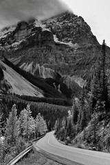Spiral Tunnel Viewpoint and a Drive Through the Canadian Rockies (Black & White, Yoho National Park) (thor_mark ) Tags: nikond800e day3 triptoalbertaandbritishcolumbia spiraltunnelview mountstephen lookingssw yohovalley capturenx2edited colorefexpro silverefexpro2 blackwhite yohonationalpark outside nature landscape overcast rockymountains canadianrockies mountains mountainsindistance mountainsoffindistance cloudsaroundmountains hillsides hillsideoftrees evergreens trees yohovalleyroad road yohovalleyroadarea alongyohovalleyroad southerncontinentalranges banfflakelouisecorearea bowrange portfolio project365 ideasigotfromothers mountainside mountainvalley britishcolumbia canada