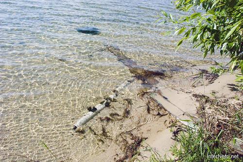 Шацький Національний Природний Парк Озеро Пісочне Берег InterNetri  Ukraine 193