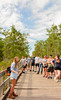 FGCU Food Forest University Colloquium 2018-12 (FGCU | University Marketing & Communications) Tags: fgcu summer2018 campustrail sustainability foodforest students fgcunature colloquium fgcunaturalist naturetrial education garden plants boardwalk