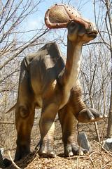 Brookfield Zoo (Tiger_Jack) Tags: brookfieldzoo zoo zoos dinosaur dinosaurs itsazoooutthere zoosofnorthamerica