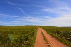 Oribi Gorge, South Africa (alicetentori) Tags: landscape southafrica sudafrica land oribigorge friends nature strada campo cielo
