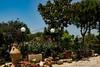 KHADIEJEH'S GARDEN (Sonja Ooms) Tags: bloemen buildings castle flower garden gebouwen jardins khadiejeh khadiejehsgarden nature natuur tuin