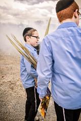 LDS_3027 (Baltimore Jewish Times) Tags: chometz chametz burning passover pesach pimlico baltimore orthodox judaism