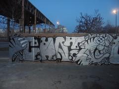 082 (en-ri) Tags: chat crew argento nero tigre tiger torino wall muro graffiti writing parco dora