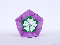 Stellaria. Flowers for Kusudama (irina_chisa) Tags: origami kusudama flowers