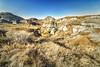Fossel Hunters Trail, Dinosaur Provincial Park, Alberta (aud.watson) Tags: canada alberta albertaprairie newellcounty dinosaurprovincialpark worldheritagesite reddeerriver fossilhunterstrail sedimentaryrock badlands fossilbeds sandstone mudstone cliff cliffs rock rocks canyon canyons ravine ravines gully gullies hoodoo hoodoos rill rills grass prairiegrass grasses erosion landscape sky