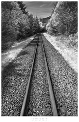 Just around the bend (John Joslin) Tags: perspective wales rhyd ddu snowdonia track tracks railway trees rocks distance symmetry verge loxia2821 outdoors outside loxia light leaves a7rii daylight forest grass hills landscape monochrome sony sky spring shadows uk zeiss