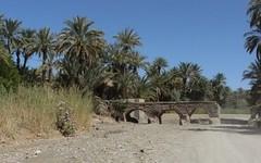 Sur la piste, entre Zagora et M'Hamid (10) (François Magne) Tags: maroc piste zagora mhamid