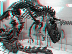 allosaurus-grey-anaglyph_14733745671_o (irrational.photography) Tags: rational irrational photography photo irrationalphotography rationalphotography irrationalphoto montreal quebec canada anaglyph stereo stereograph picture red cyan blue magenta 3d anaglyphs fuji fujifilm w3 finepix