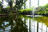 Fish pond at Buxton Conservatory.   May 2018 (dave_attrill) Tags: derbyshire peakdistrict town may 2018 buxton gardens indoorgarden conservatory pavilion pond tank sprinkler plants water