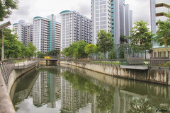 Rochor Canal, Singapore (cattan2011) Tags: bridge architecturephotography architecture traveltuesday travelphotography travelbloggers travel streetpicture streetphoto streetphotography streetart river canal waterscape reflections landscapephotography landscape 新加坡 rochorcanal singapore