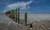 Sea Defences (Michael's shots) Tags: nikond3100 beach coast southcoast sky clouds