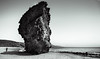 Playa de los Muertos. Almería. Spain (juanjo_rueda) Tags: playadelosmuertos almeria nijar cabodegata cabodegatanijar playa beach tree landscape artwork blackandwhite monochrome spain turismospain aguaamarga