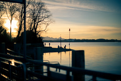 Enjoying the sunset (Rico the noob) Tags: dof bokeh 50mm landscape sunset nature water mountains outdoor urbanexploration clouds sun 2017 tree published urban trees ship sky germany chiemsee 50mmf12 d850 mountain