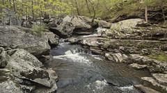 RED02632 (David J. Thomas) Tags: petitjeanstatepark morrilton arkansas hiking caving bedrock forests trees rocks streams creeks waterfalls cedarcreek rockhousecave asgcsymposium