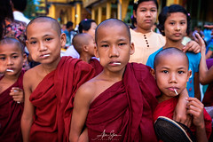Novices at the Shwedagon Pagoda (Yangon, Myanmar 2013) (Alex Stoen) Tags: 1dx 500px alexstoen alexstoenphotography burma canon canoneos1dx culture ef1635f28liiusm fabric flickr fun geotagged google monks myanmar natgeo nationalgeographicexpeditions novicemonks people portrait shwedagonpagoda society streetphotography travel vacation yangon buddhism facebook smugmug