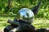 Garden Reflections (evisdotter) Tags: garden reflections trädgård spegling selfie spring macro sooc sunny light åland