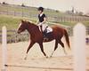 (suzcphotography) Tags: horse riding equestrian hunter jumper trot halfinger quarter mare canon 5dmarkii 50mm