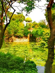 Green peace....💚 (carlesbaeza) Tags: green park tree water peace ngc catalonia pond nature