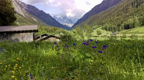 Vacation in Switzerland