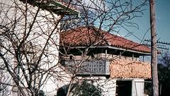 Hórreo asturiano - Asturian granary (Raúl Alejandro Rodríguez) Tags: analog film 35mm voigtländer bessamatic colorskopar 50mmf28 colorslide kodachrome kodak hórreo granary asturiano asturian árbol tree villaviciosa asturias españa