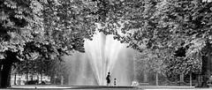 Brussels; Parc De Bruxelles (drasphotography) Tags: brussels brüssel bruxelles parc de park fountain brunnen trees bäume albero monochrome monochromatic monotone blackandwhite bw bianconero schwarzweis sw drasphotography nikkor70200mmf28 d810 nikon travel travelphotography