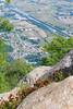 Dai Massi il Colore (Roveclimb) Tags: montagna mountain alps alpi muncech escursionismo hiking trekking casenda paiedo berlinghera zania forcelladellazania valmilano altolario valchiavenna sorico pianodichiavennaù pianodichiavenna flower fiore rododendro spring primavera fioritura rhododendron