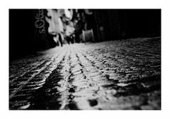 """Hypertension"" (The Blue Water Lily's Company) Tags: fdrouet nb bw monochrome monochrom street rue bokeh nikon d90"