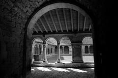 Abbaye de St-Papoul (Philippe_28) Tags: aude 11 saintpapoul cloître abbaye abbey monastère france europe 24x36 argentique analogue camera photography film 135 bw nb