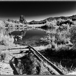 Rabe Meadows in Black and White thumbnail