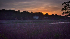 Deep Dusk Over Wetlands (Eric Gross) Tags: sunset dusk connecticut new england wetlands