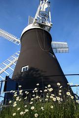 Holgate Windmill, May 2018 - 3