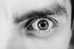 Single male eye in black and white (freestocks.org) Tags: red anger angry bw ball black close closeup detail emotion emotions expression eye eyebrow eyelashes eyes face feelings furious gaze gazing intense lash lashes look looking mad male man open portrait pupil reflecion reflect serious stare staring straight thoughtful up white wide